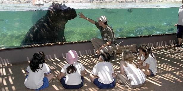 fotos del zoologico temaiken en buenos aires